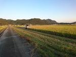 2018年産稲刈り